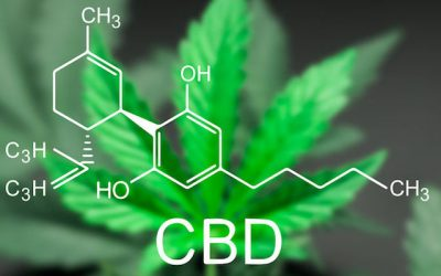 Research-Supported Health Benefits of CBD